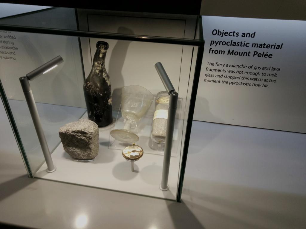Museo de Historia Natural, Londres 2018-429