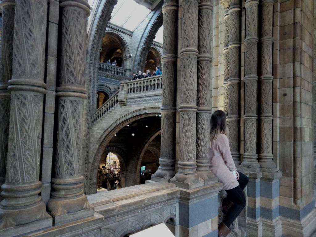 Museo de Historia Natural, Londres 2018-442