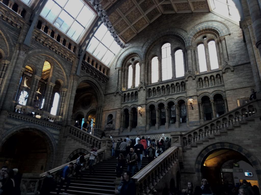 Museo de Historia Natural, Londres 2018-443