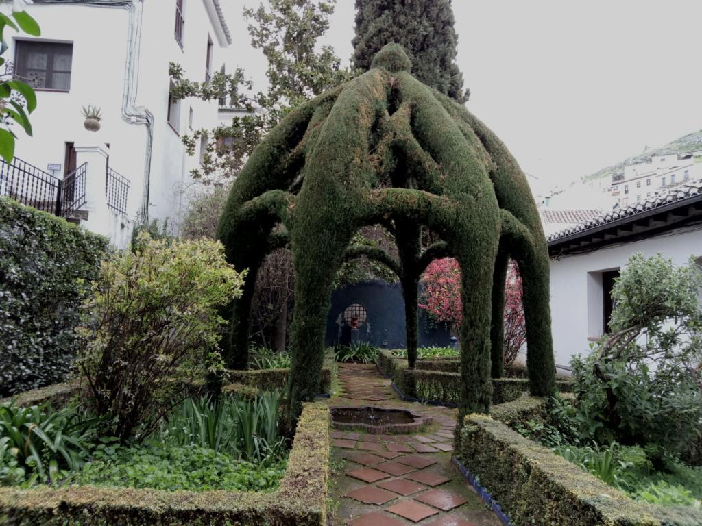 La Alhambra secreta 2018-492