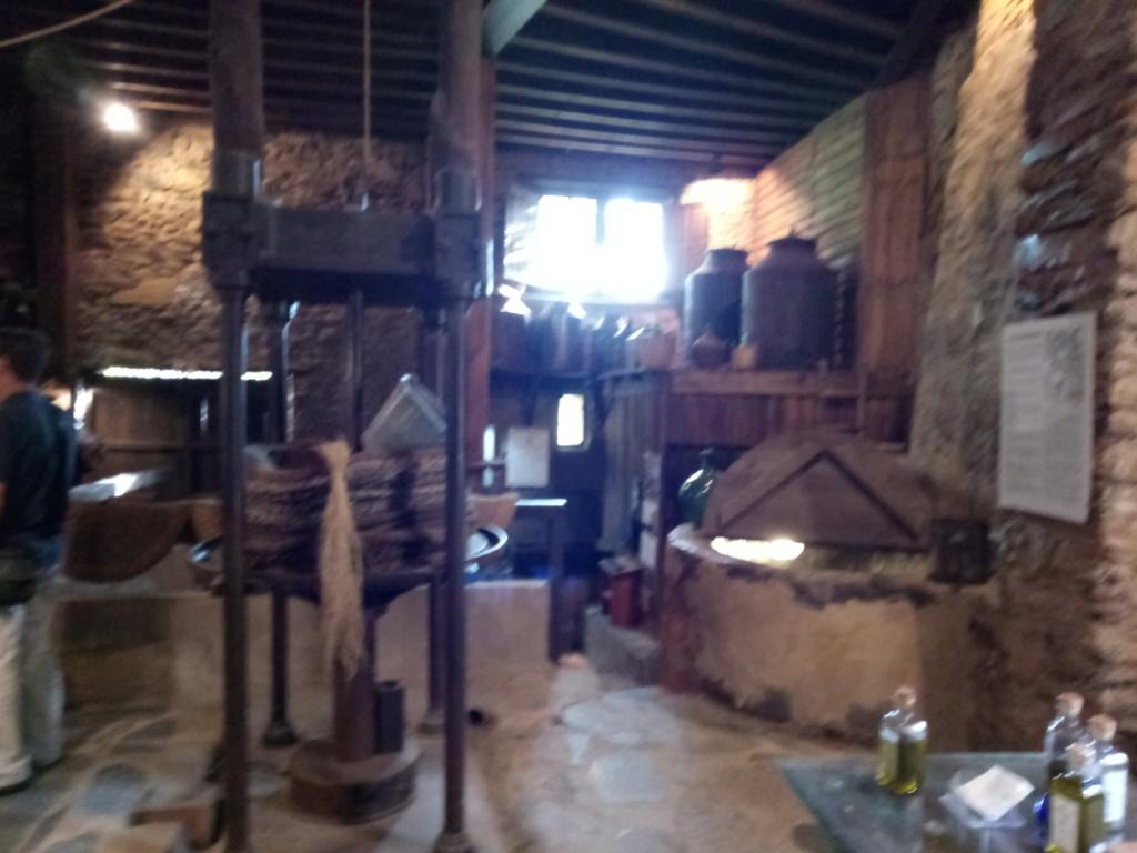 Museo del aceite, Robledillo de Gata 2019-174