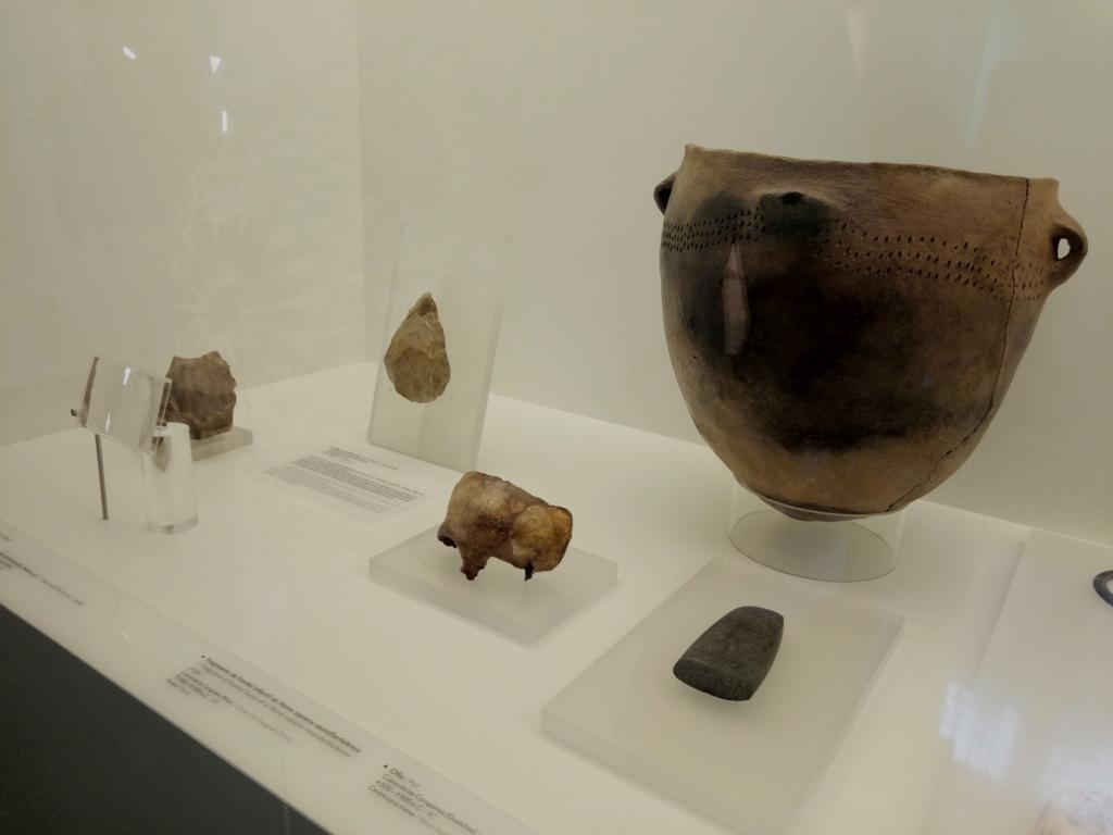 El Museo Arqueológico de Granada reabre sus puertas el viernes 2019-224