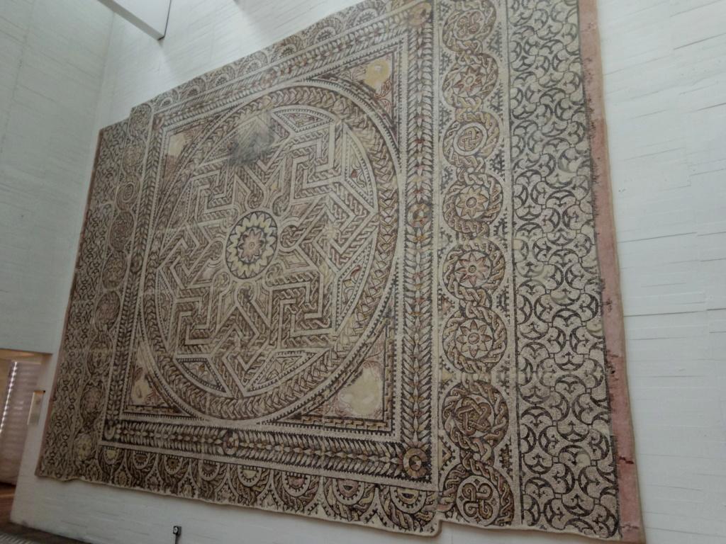 Museo arqueológico de Zamora 2019-313