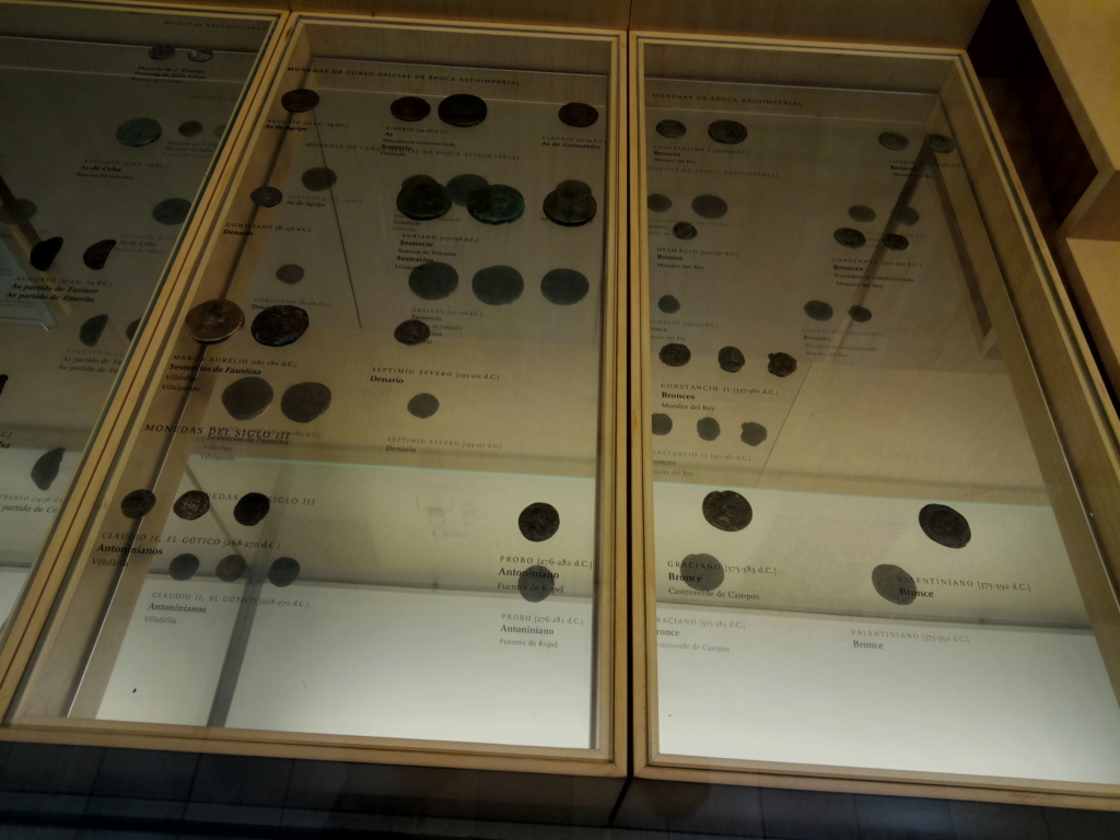 Museo arqueológico de Zamora 2019-317