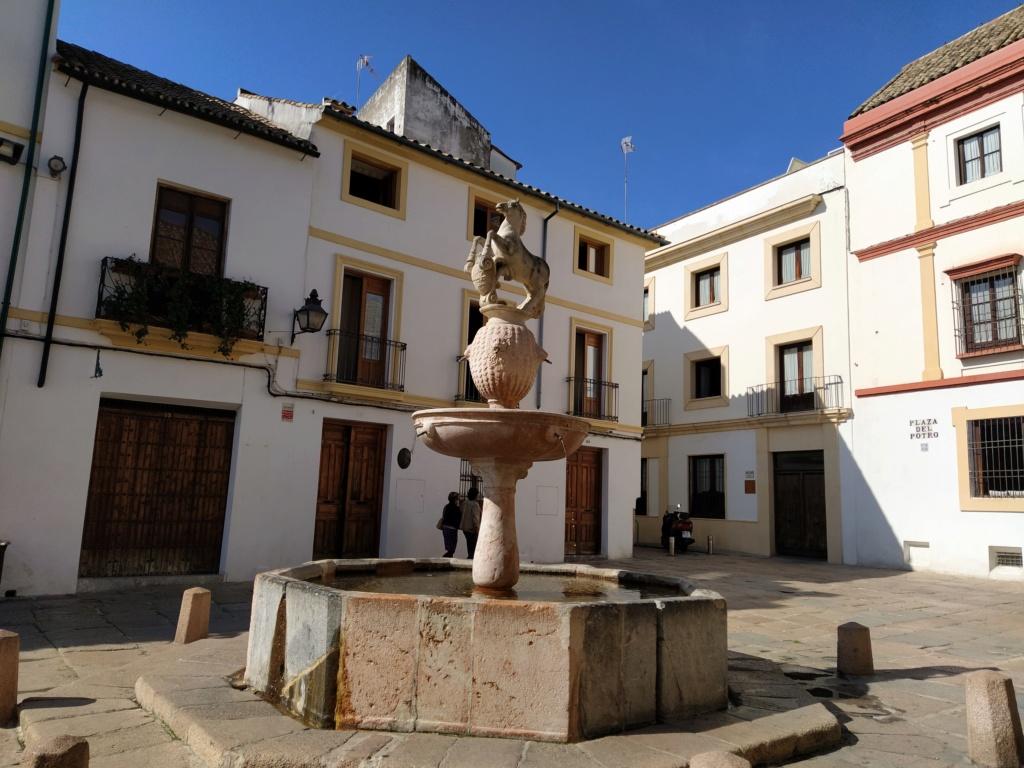 Museo de Bellas Artes, Córdoba 2020-120