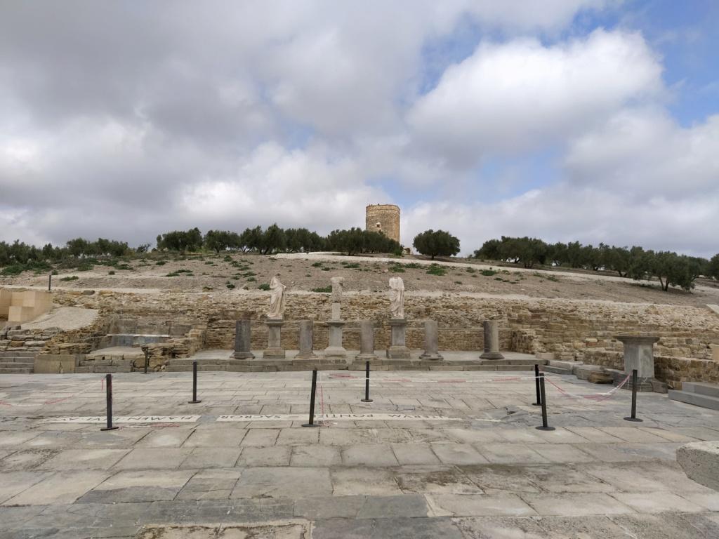 Museo de Baena y Torreparedones 2020-130