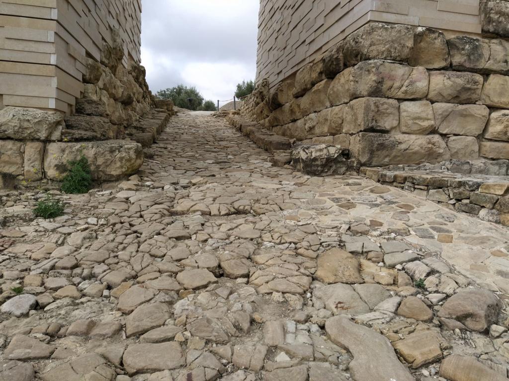 Museo de Baena y Torreparedones 2020-131