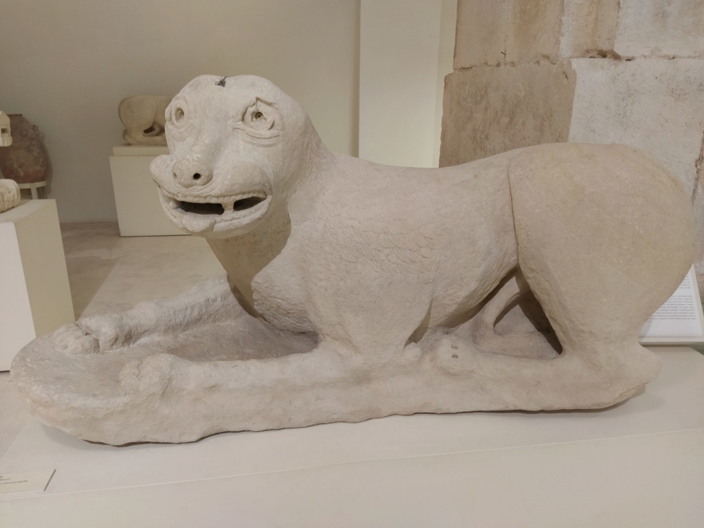 Museo de Baena y Torreparedones 2020-142