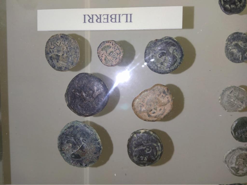 Museo de Baena y Torreparedones 2020-158
