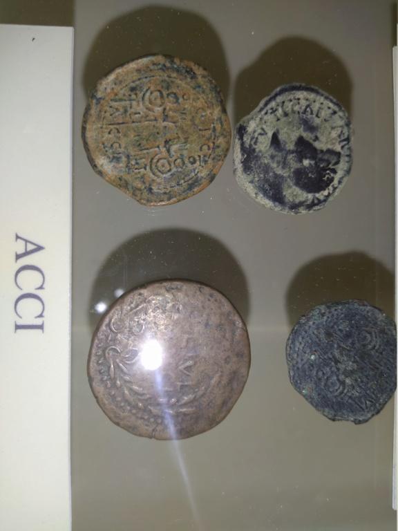 Museo de Baena y Torreparedones 2020-159