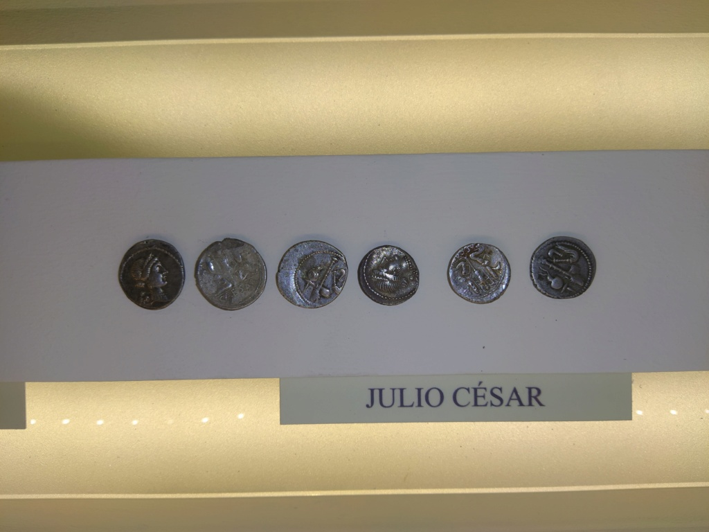 Museo de Baena y Torreparedones 2020-170