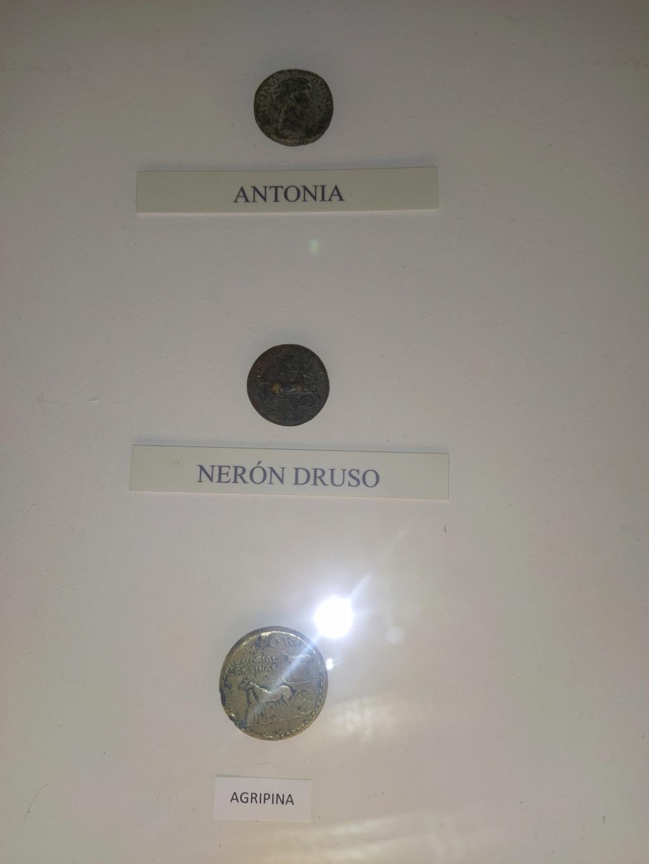 Museo de Baena y Torreparedones 2020-171