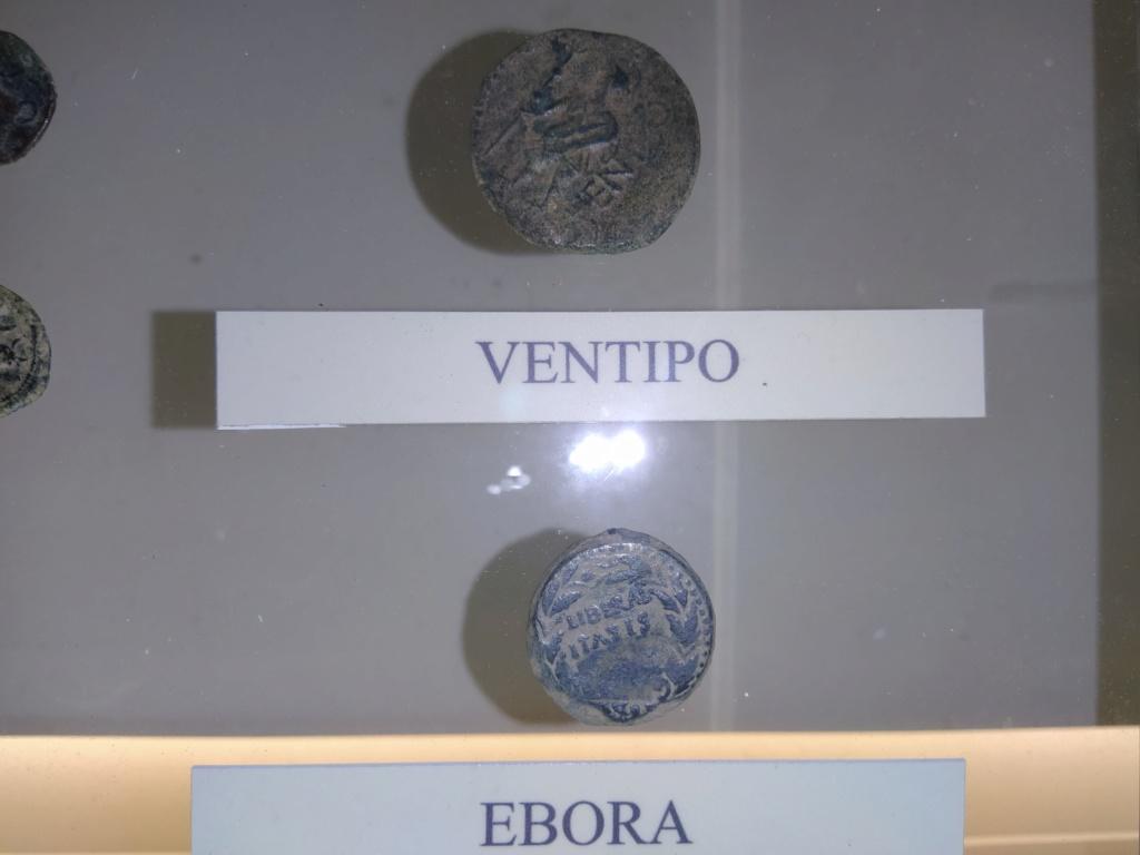 Museo de Baena y Torreparedones 2020-188