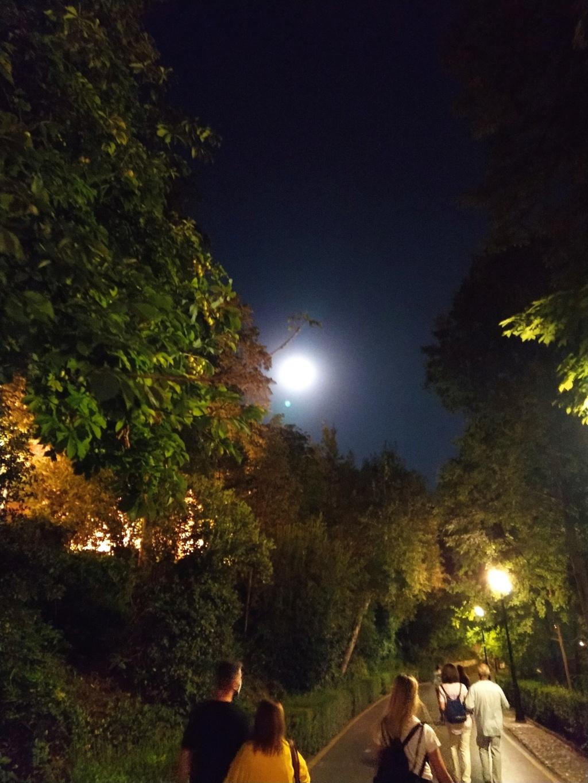La Alhambra nocturna, espectáculo único 2020-228