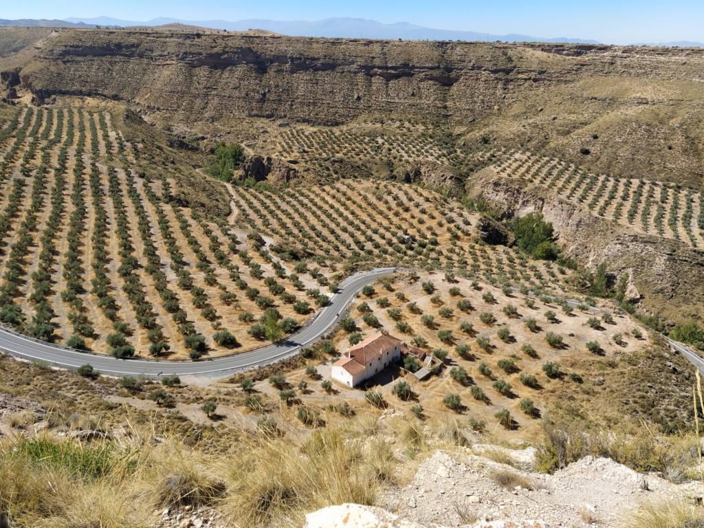 Parque megalítico de Gorafe, Granada 2020-234