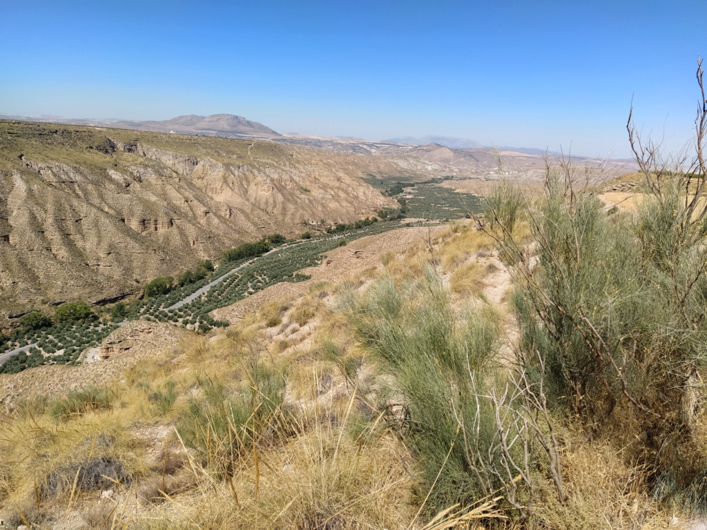 Parque megalítico de Gorafe, Granada 2020-240