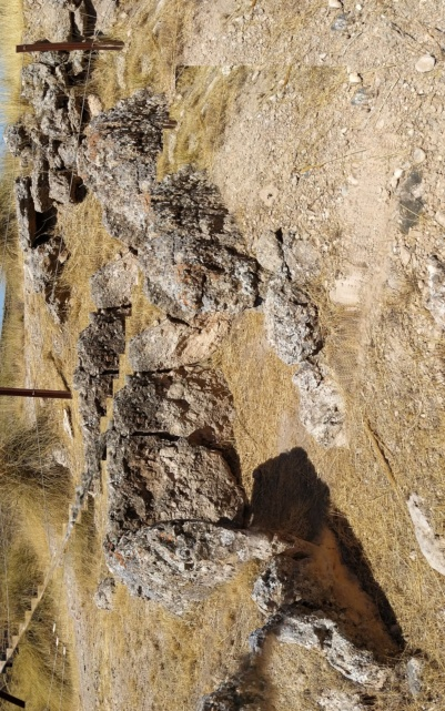 Parque megalítico de Gorafe, Granada 2020-244