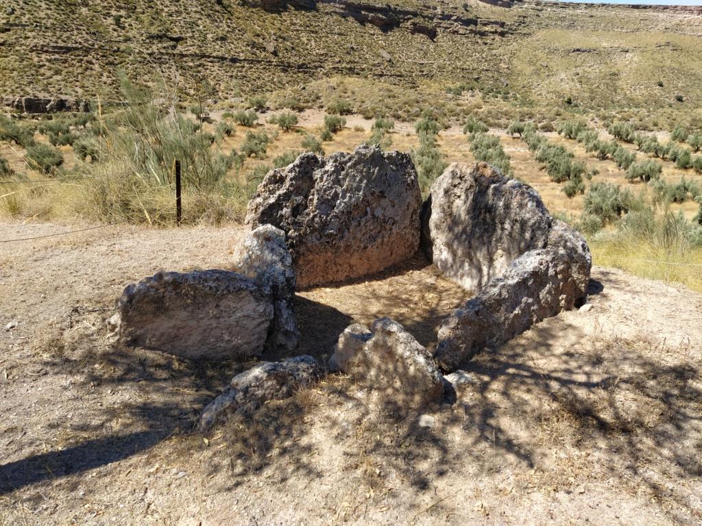 Parque megalítico de Gorafe, Granada 2020-248