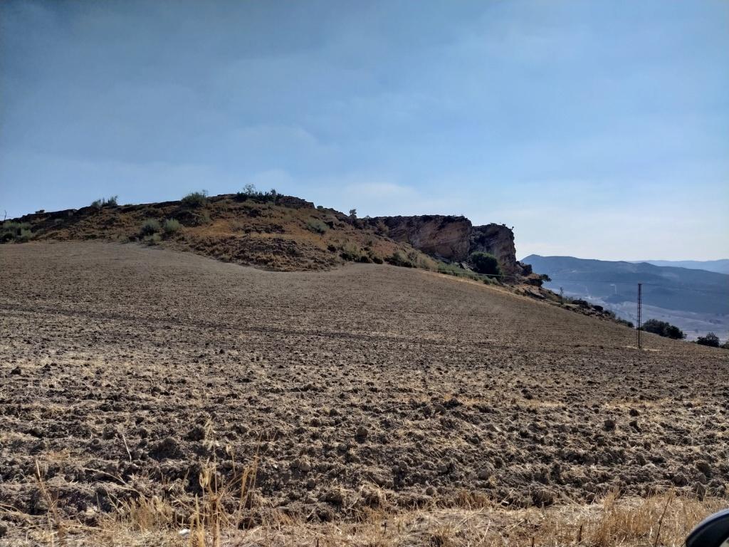 Descubren en Algarinejo una ciudad fortificada con 5.000 años de antigüedad 2021-119