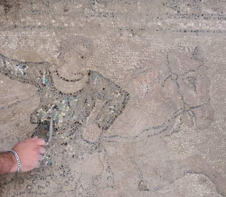 salar - Villa romana de Salar 40393510