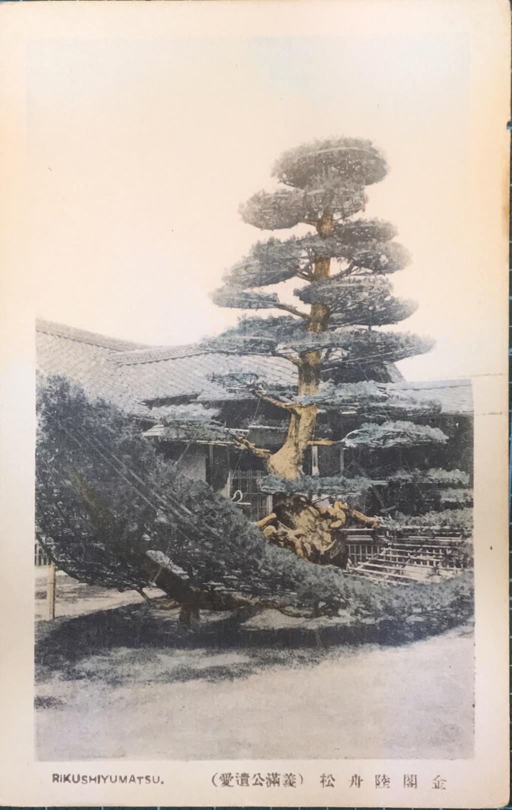Postales Japón 81-ec710