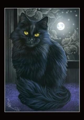 Dictionnaire de magie et de sorcellerie (1) Chat_f10