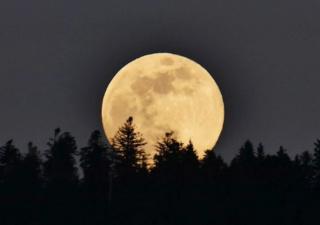 """La """"super Lune"""" est de retour Lune_z10"""