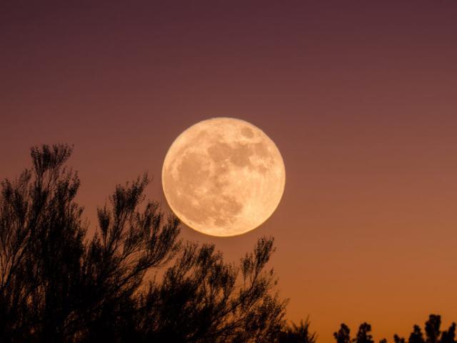 La Lune, cette très vielle dame Lune_z14