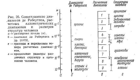 Nivelele Critice din Procesele de Dezvoltare ale Sistemelor Biologice (A. V. Jirmunskiǐ, V. I. Kuzǐmin) F_26b11