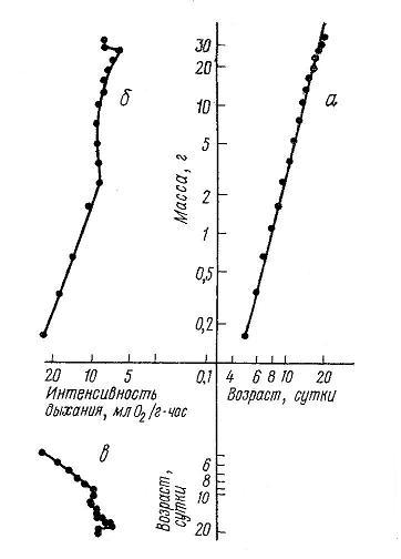 Nivelele Critice din Procesele de Dezvoltare ale Sistemelor Biologice (A. V. Jirmunskiǐ, V. I. Kuzǐmin) F_32b10