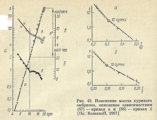 Nivelele Critice din Procesele de Dezvoltare ale Sistemelor Biologice (A. V. Jirmunskiǐ, V. I. Kuzǐmin) F_48_410