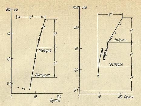Nivelele Critice din Procesele de Dezvoltare ale Sistemelor Biologice (A. V. Jirmunskiǐ, V. I. Kuzǐmin) F_50_510