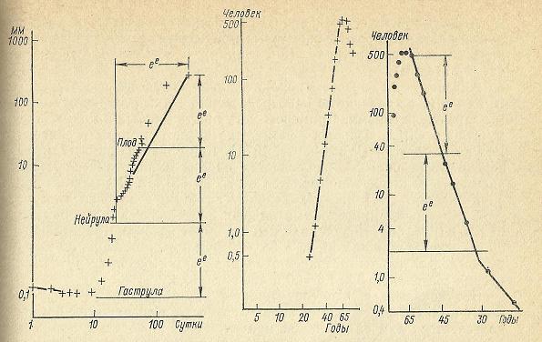 Nivelele Critice din Procesele de Dezvoltare ale Sistemelor Biologice (A. V. Jirmunskiǐ, V. I. Kuzǐmin) F_52_510