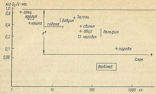 Nivelele Critice din Procesele de Dezvoltare ale Sistemelor Biologice (A. V. Jirmunskiǐ, V. I. Kuzǐmin) F_72b10