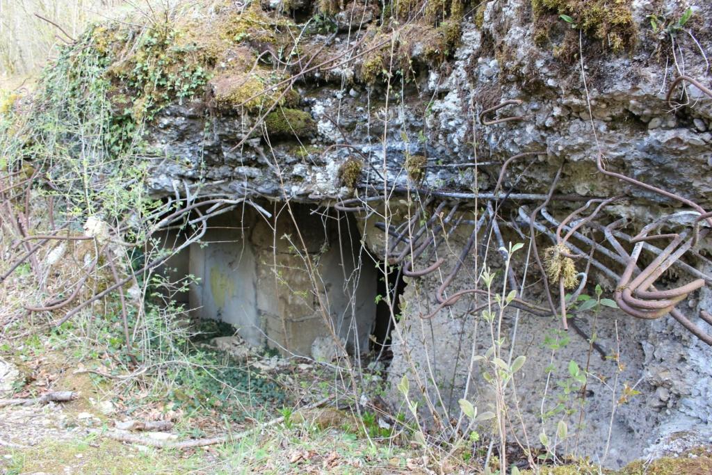 De l'étang de Vaux à Bezonvaux  17460810