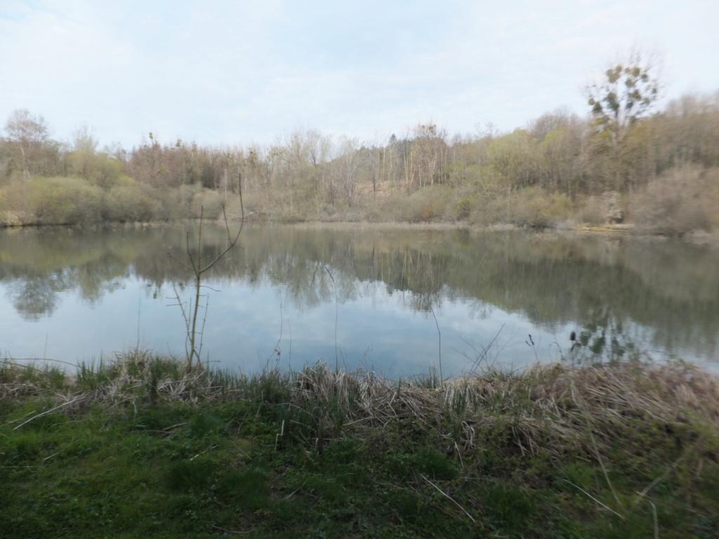 De l'étang de Vaux à Bezonvaux  Dscf0521
