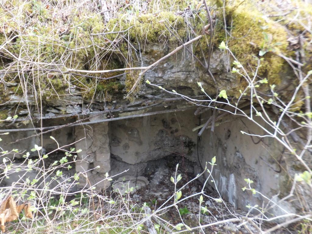 De l'étang de Vaux à Bezonvaux  Dscf0526