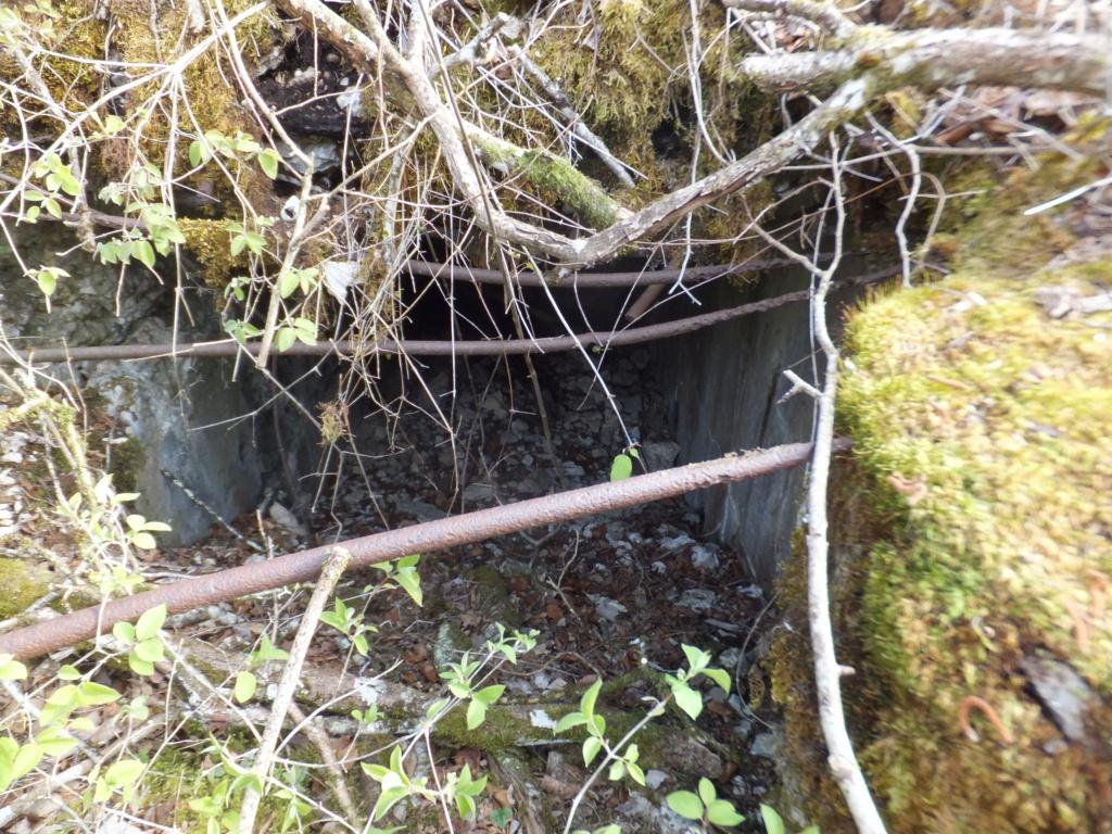 De l'étang de Vaux à Bezonvaux  Dscf0531