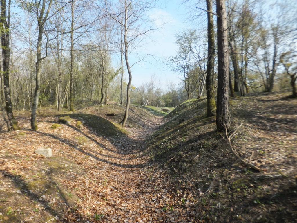 De l'étang de Vaux à Bezonvaux  Dscf0541