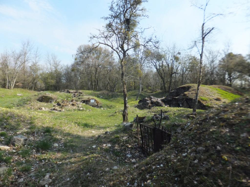 De l'étang de Vaux à Bezonvaux  Dscf0542