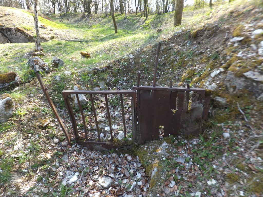 De l'étang de Vaux à Bezonvaux  Dscf0543