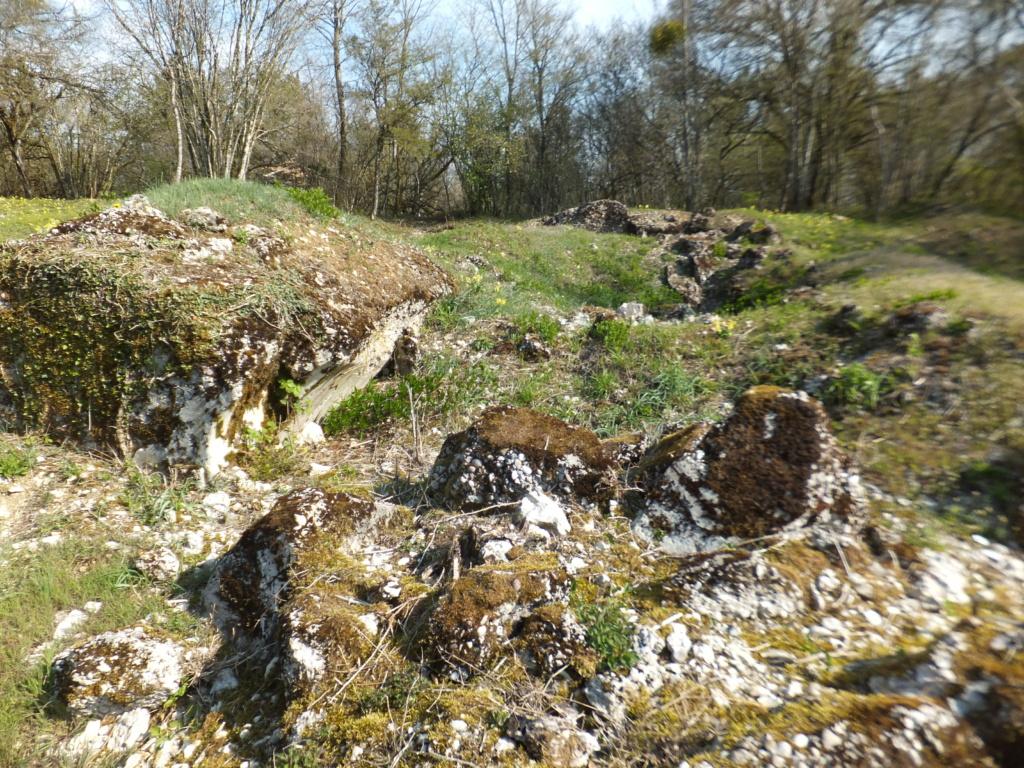 De l'étang de Vaux à Bezonvaux  Dscf0548