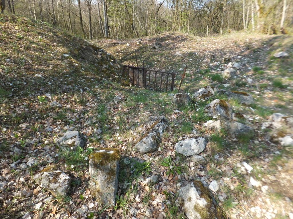 De l'étang de Vaux à Bezonvaux  Dscf0630