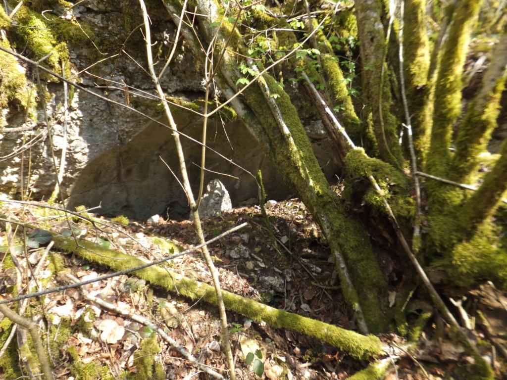 De l'étang de Vaux à Bezonvaux  Dscf0643