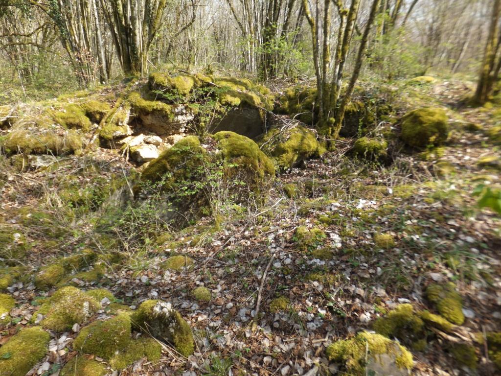 De l'étang de Vaux à Bezonvaux  Dscf0644