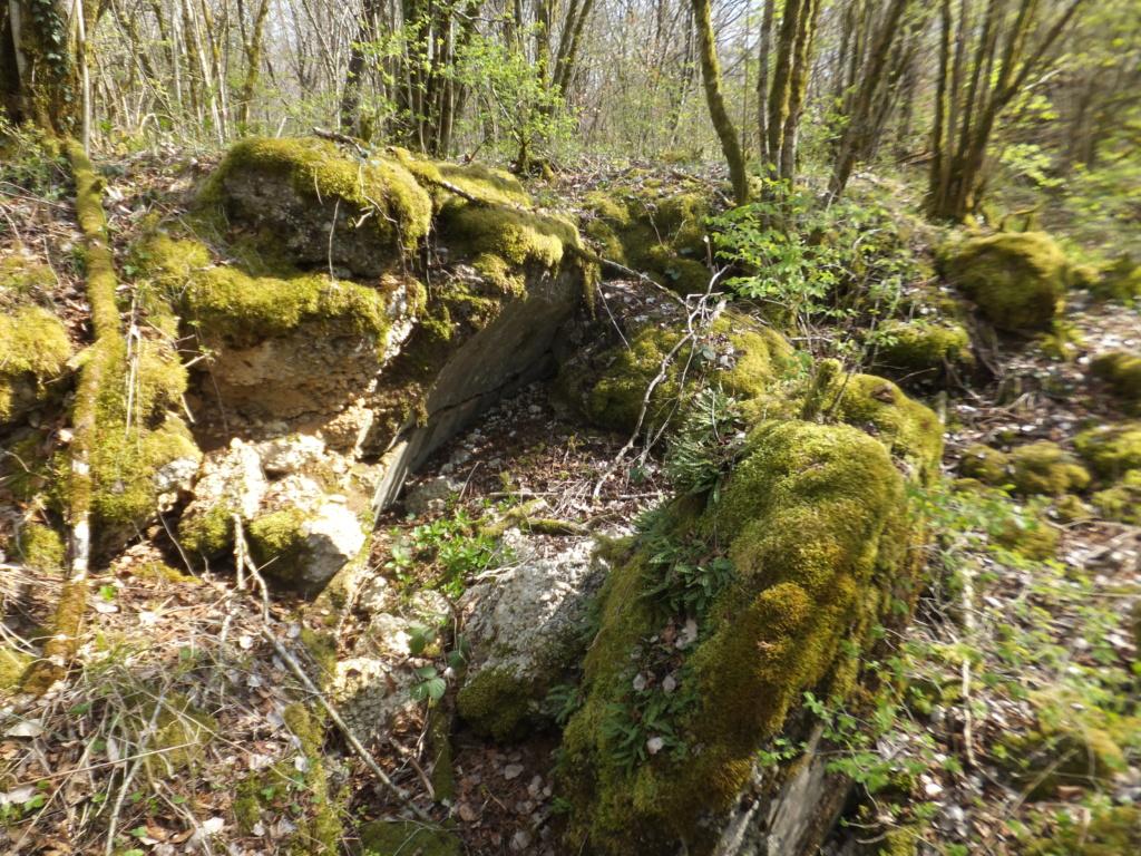 De l'étang de Vaux à Bezonvaux  Dscf0645