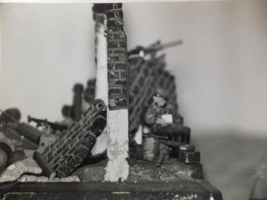 Feu mes anciens dioramas Dscf6827