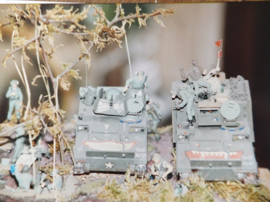 Feu mes anciens dioramas Dscf6832