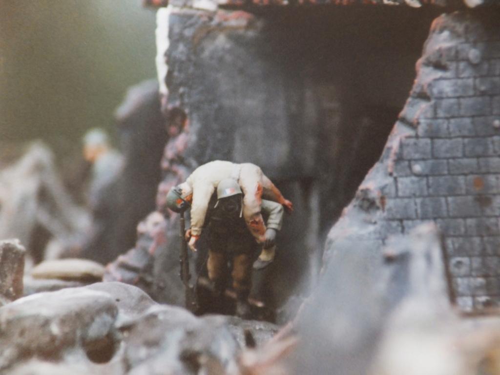 Feu mes anciens dioramas Dscf6833