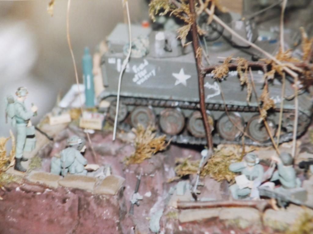 Feu mes anciens dioramas Dscf6834